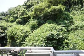 鎌倉グリーンヒルズ